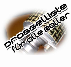 roller tuning peugeot speedfight2 entdrosseln styling. Black Bedroom Furniture Sets. Home Design Ideas